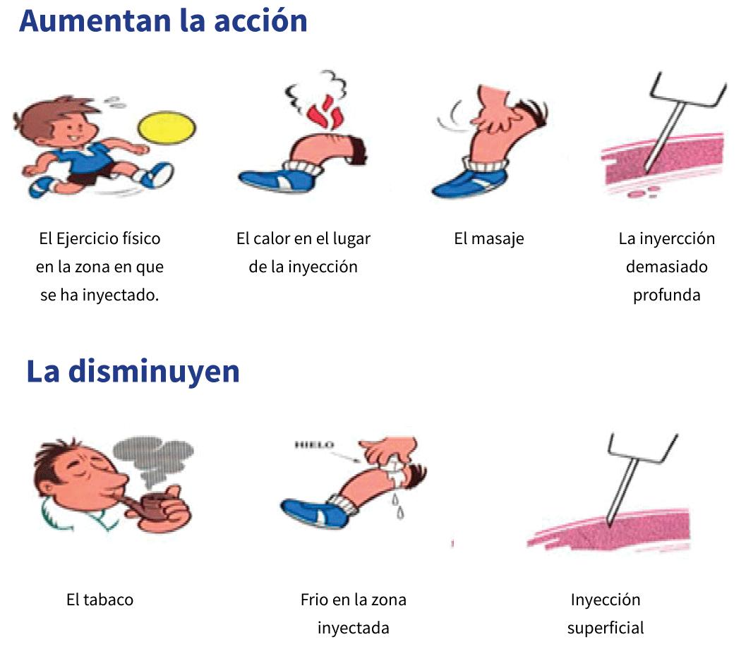 perfil_accion_insulina